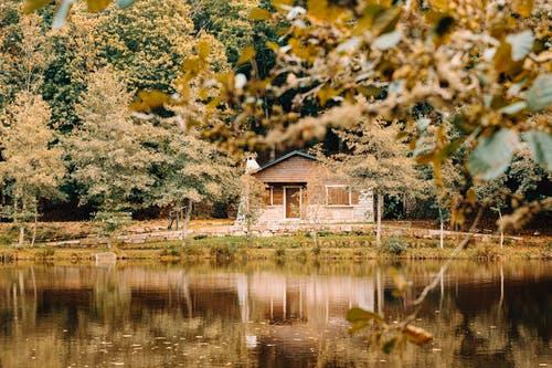 dům příroda