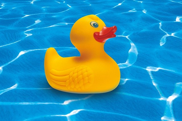 kačenka v bazénu.jpg